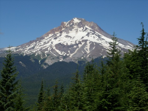 Classic Mt Hood from Horseshoe Ridge